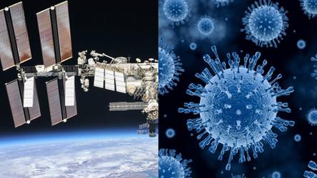 Naukowcy w końcu rozwikłali zagadkę dziwnej bakterii w kosmicznym domu