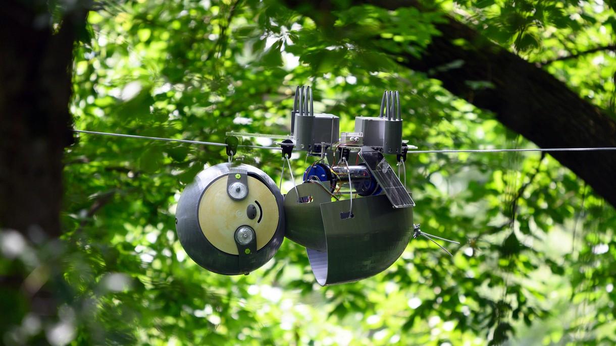 Nadchodzi SlothBot, czyli robo-leniwiec do ratowania ginących gatunków [FILM]