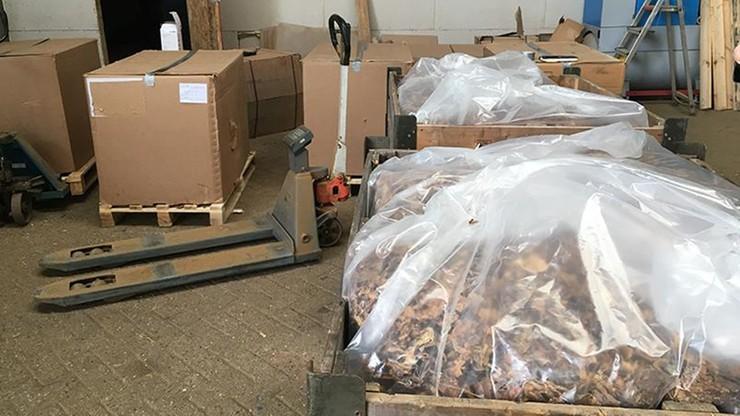 Europol: międzynarodowa grupa handlarzy nielegalnym tytoniem rozbita. 18 zatrzymanych z 7 krajów