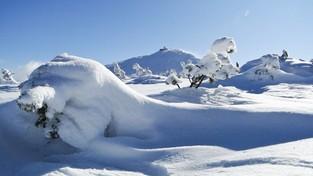 20-02-2020 12:00 Bajeczna zima w Karkonoszach. Nie musisz tam być, aby zachwycić się tym pięknem. Zobacz film!