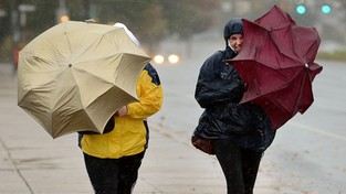 06.07.2020 07:00 Ponad 6 milionów piorunów w czerwcu, który zapisał się jako rekordowo deszczowy