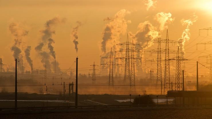 Decyzja ws. cen energii. Ile będzie nas kosztował prąd?