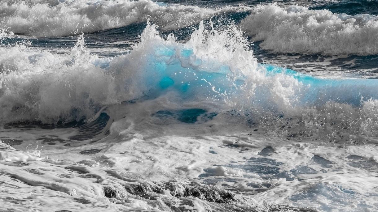 Morza i oceany są dosłownie usłane setkami tysięcy najróżniejszych groźnych wirusów
