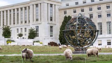 Polska i inne kraje w Radzie Bezpieczeństwa ONZ apelują o zakończenie ofensywy w Syrii