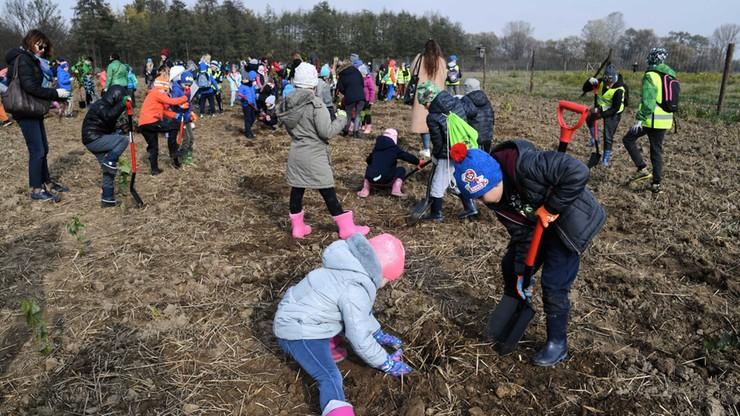 Kraków sadzi las z okazji Nobla dla Olgi Tokarczuk
