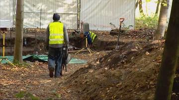 """Na Westerplatte odkryto kolejne ludzkie szczątki. """"Kości z zachowanymi butami saperskimi"""""""