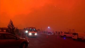 Dramatyczne sceny w Australii. Ogień zatrzymał kilka tysięcy osób na plaży w Mallacoota [WIDEO]