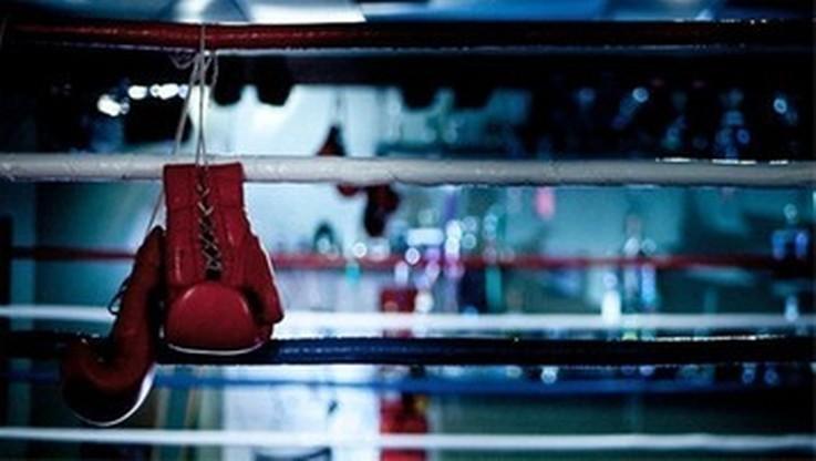 Znany promotor planuje organizować walki bokserskie we własnym ogrodzie