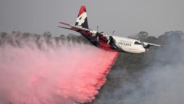 Klimatolog: ocieplenie sprawiło, że gaszenie pożarów leśnych jest trudniejsze