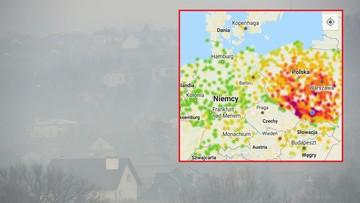 """""""Czerwona zaraza nad Polską"""". Przekroczenia norm o kilkaset procent. Spacery nie są wskazane"""