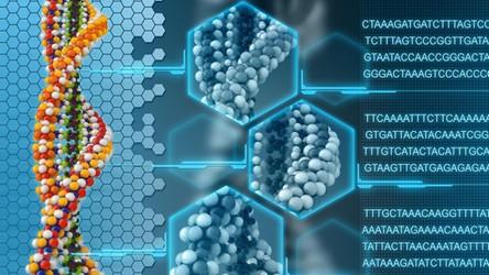 Nasz genom stanie się Internetem 2.0 i przyspieszy rozwój sztucznej inteligencji