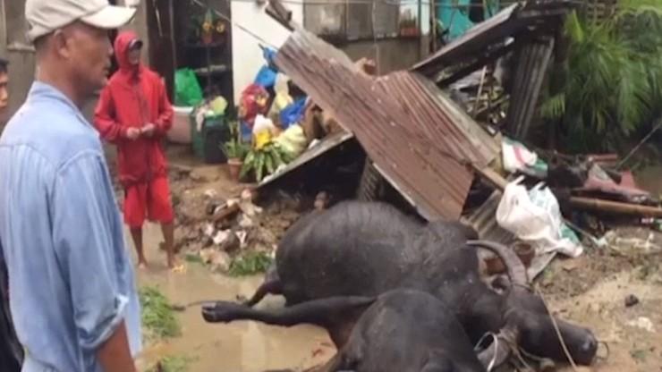 Tajfun Phanfone spustoszył Filipiny. Kilkanaście ofiar, zniszczone wioski [WIDEO]