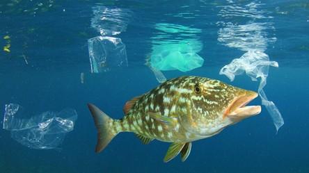 Bąbelki powietrza ochronią światowe oceany przed górami plastikowych śmieci