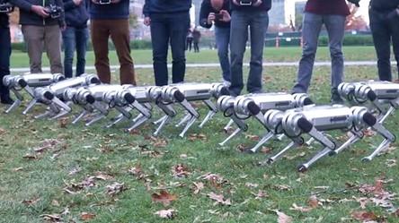 MIT chce zalać miasta małymi, ale sprytnymi robotami o nazwie MiniCheetah (film)
