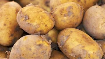 Automat w Czechach sprzedaje... ziemniaki