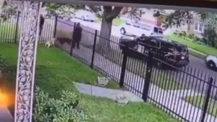 Policjant nie mógł rozdzielić gryzących się psów. Zastrzelił jednego