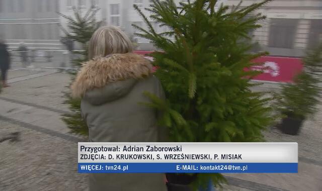 Władze Białegostoku rozdały mieszkańcom miasta sto żywych choinek w zamian za oddanie sztucznego drzewka.