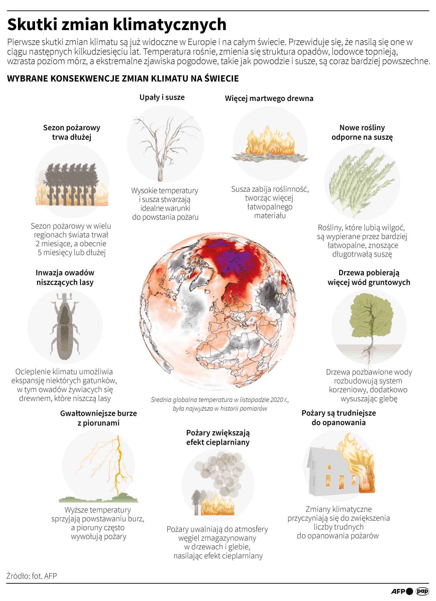 Skutki zmian klimatycznych