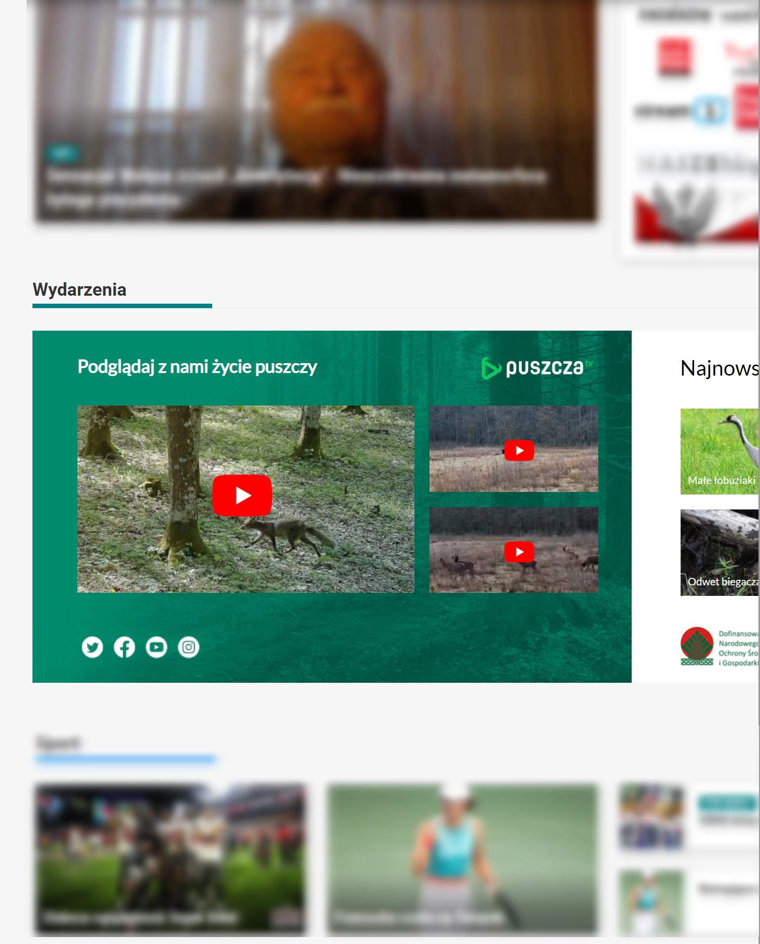 Baner Puszcza.tv na stronie głównej niezalezna.pl