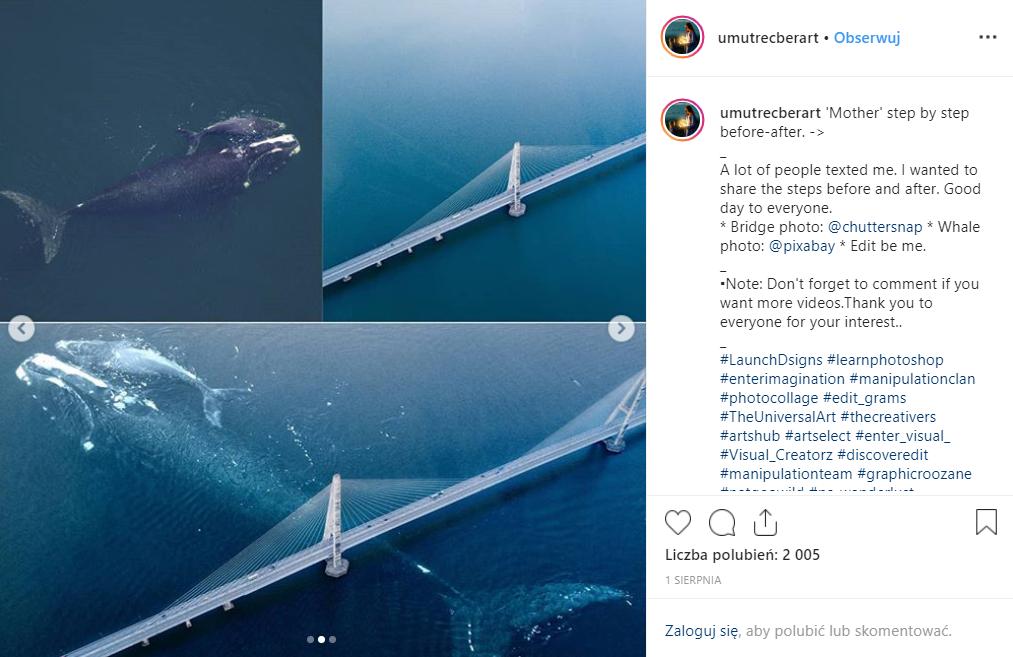 Jak powstał fotomontaż przedstawiający wieloryba