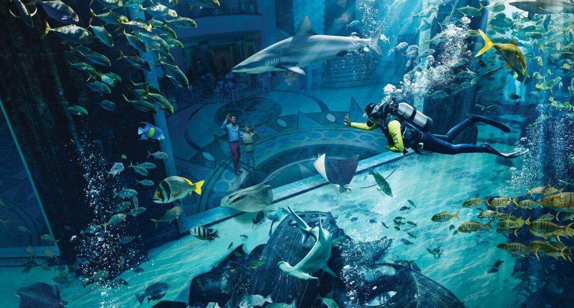Hotel Atlantis the Palm - Dubaj - Zjednoczone Emiraty Arabskie
